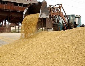 Николаевская область продемонстрировала рекордные показатели по сбору зерновых