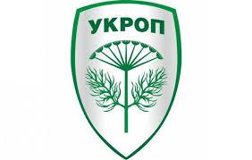 Переполох в Николаевском «Укропе» — местные организации хотят переизбрать главу партии в области